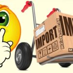 Mini Importation Business