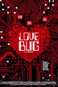 Love Bug (2021)