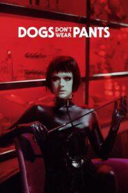 Dogs Dont Wear Pants 2019