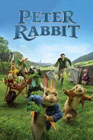 Peter Rabbit 1 (2018)