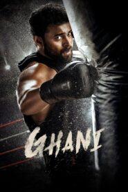 Ghani 2021